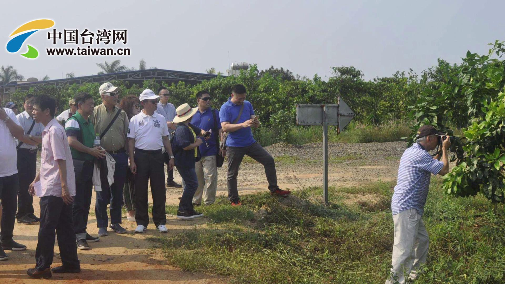 琼台农业融合发展图片