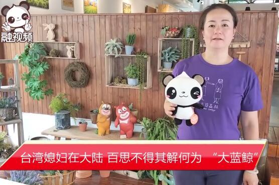 """台湾媳妇在大陆,百思不得其解何为 """"大蓝鲸"""""""