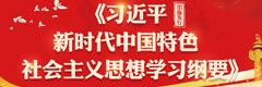 《习近平新时代中国特色社会主义思想学习纲要》出版