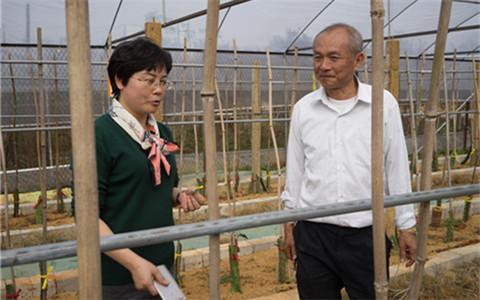 广西台办主任走访看望广西-东盟经济技术开发区台商