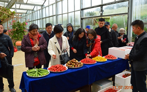 第五届筑台两地都市现代农业交流活动圆满举行