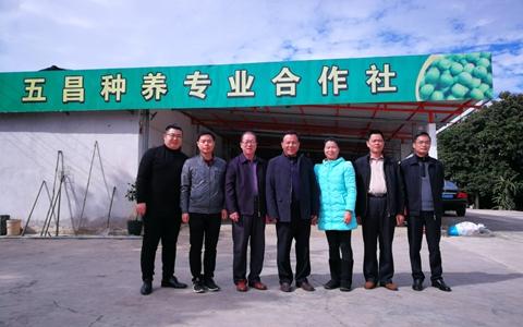 梅州市委台办主任王忠豪一行赴丰顺县开展调研