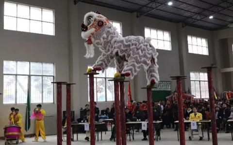 台湾龙狮团协会参加2019年中国·东盟(富川)国际龙狮争霸赛