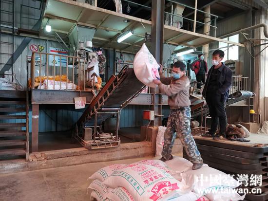 大成农技(葫芦岛)有限公司正在抓紧生产.jpg