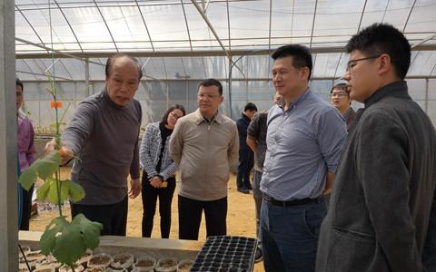 广西台办副主任丘德彬到海峡两岸产业合作区崇左产业园调研