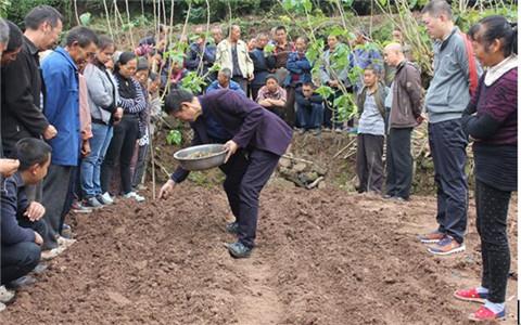 四川绵阳市台办组织台企到农村开展中药材种植技能培训