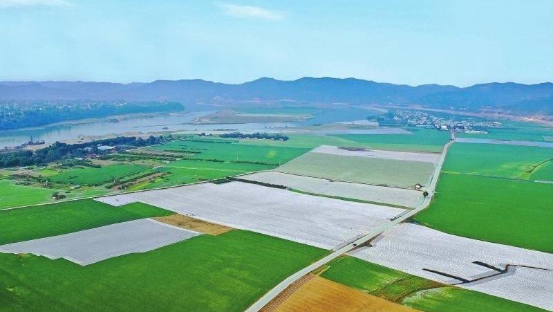 2020年四川粮食产量突破700亿斤