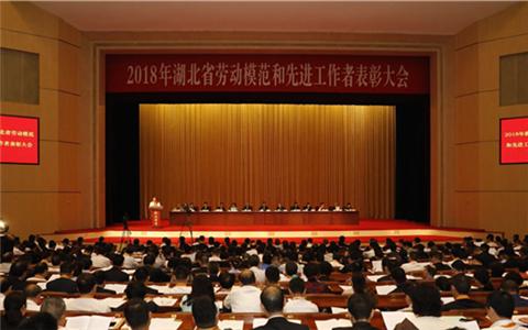 大奖888同胞首次在湖北当选省劳模