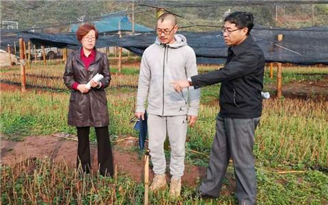 云南台办巡视员周友亮率工作组赴普洱、西双版纳对接云台合作项目