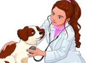 港澳台居民参加全国执业兽医资格考试及执业管理规定
