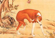 《十骏犬之金翅猃图》