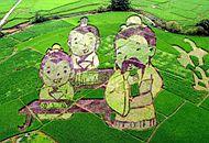 广西高铁沿线现大型稻田艺术景观带.jpg