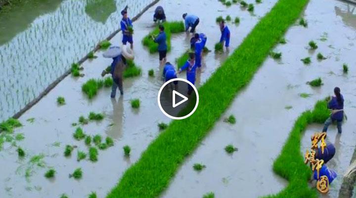 《辉煌中国》第五集
