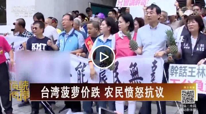 台湾菠萝价跌 农民愤怒抗议