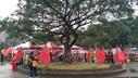 228公园被插满五星红旗