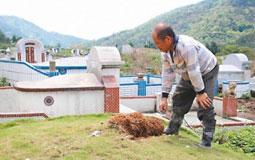 """""""内政部""""欲在公墓设太阳能 网友讽:非核家园变墓园"""