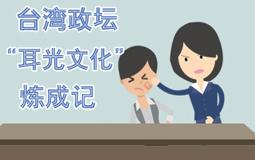 """台湾政坛""""耳光文化""""炼成记"""