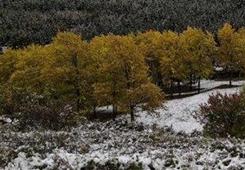 国庆节后期再遇雨雪降温