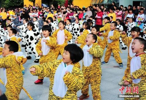 福州一幼儿园举办十二生肖趣味运动会
