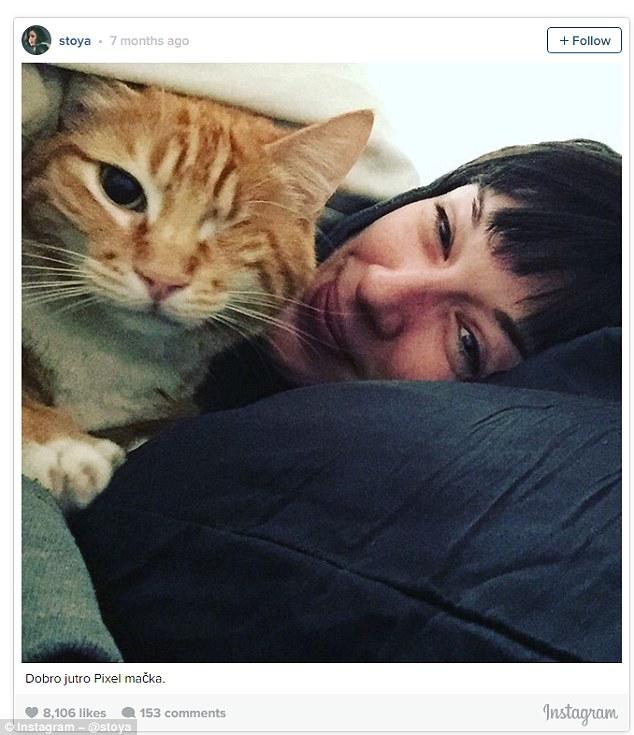 史托雅(stoya)是一位潮人艳星,照片中的她与一只棕色的小猫一起盖着