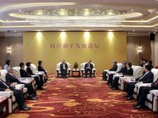 两岸和平发展论坛在北京成功举办